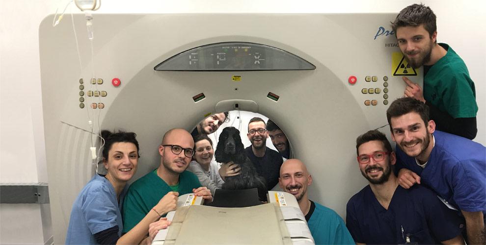 Tomografia computerizzata | Clinica Veterinaria Futuravet | Tolentino
