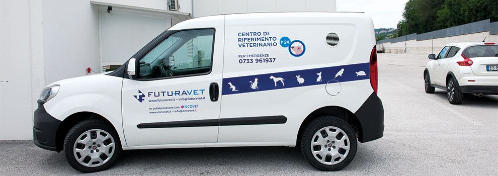Servizio navetta animali | Futuravet Clinica Veterinaria Tolentino | Marche