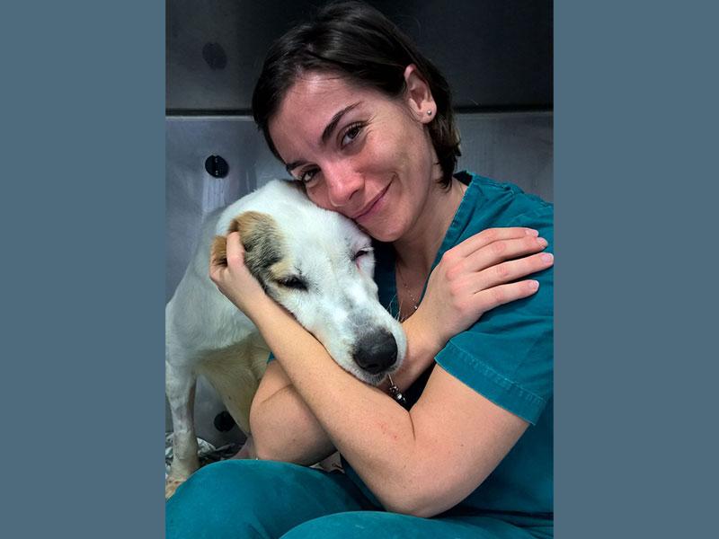 Dr.ssa Fabiola Verdesca | Veterinario | Pronto Soccorso e Terapia Intensiva | Clinica Futuravet | Tolentino | Marche