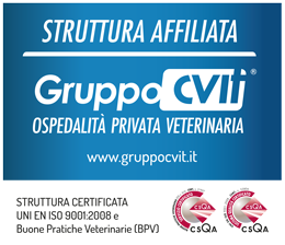 Futuravet | Clinica Veterinaria Affiliata al gruppo CVIT