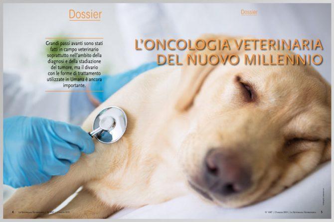 L'oncologia veterinaria del nuovo millennio