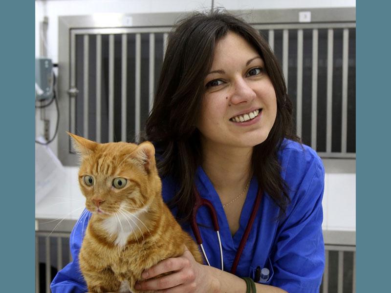 Dr.ssa Cristina Sampino - Tecnico Veterinario Clinica Futuravet