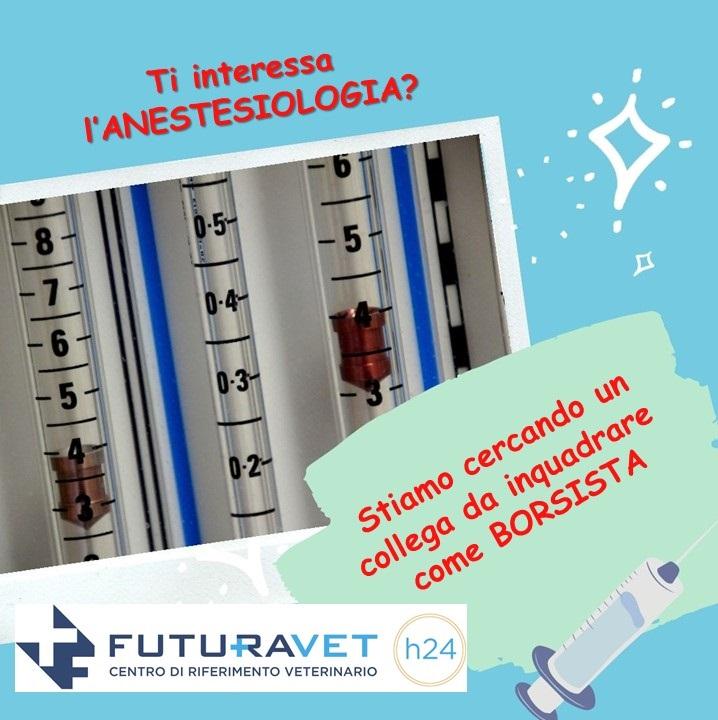 Borsa di studio in Anestesiologia