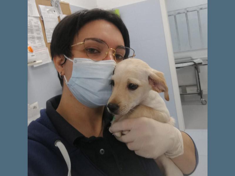 Dr.ssa Maria Cristina Lombardi - Medico Veterinario Clinica Futuravet