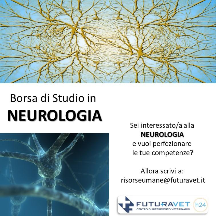 Borsa di studio in Neurologia