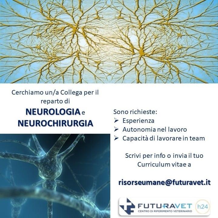 Posizione aperta per il reparto di Neurologia e Neurochirurgia